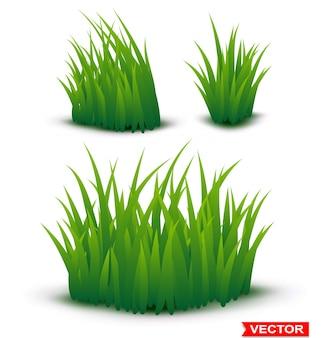 Fondo de textura horizontal de hierba verde