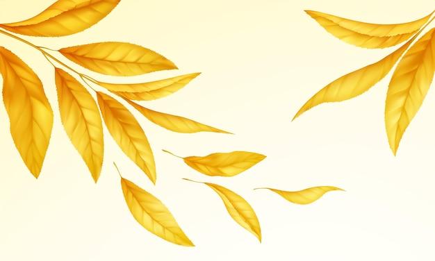 Fondo de textura de madera realista. textura de piso de madera. ilustración de vector eps10