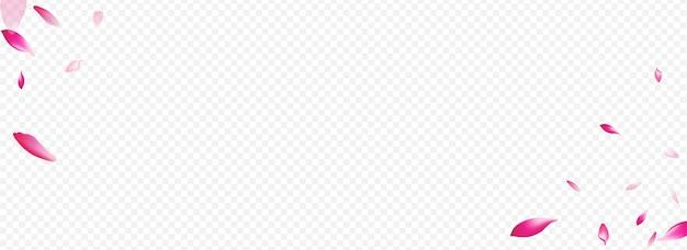 Fondo transparente panorámico del vector de la cereza clara. textura de jardín de flores. patrón gráfico de confeti. tarjeta de la naturaleza del árbol. ilustración de la madre rosa blanca.