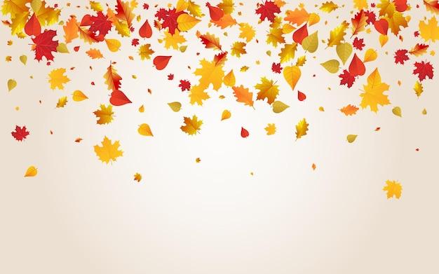 Fondo transparente del vector de la planta colorida. textura de follaje volador. diseño de hojas de colección naranja. ilustración aislada.