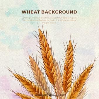 Fondo de trigo en estilo hecho a mano