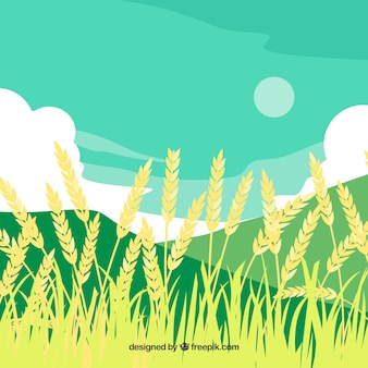 Fondo de trigo hecho a mano
