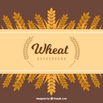 Fondo de trigo plano