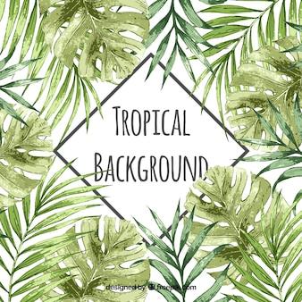 Fondo tropical en acuarela con estilo vintage