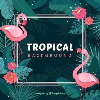 Fondo tropical adorable con diseño plano