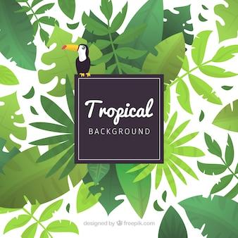 Fondo tropical adorable con diseño plano