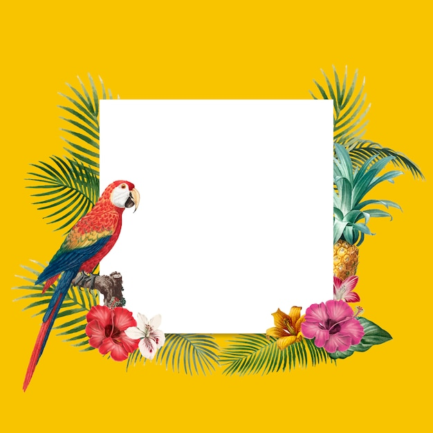 Fondo tropical en blanco