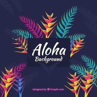 Fondo tropical colorido con diseño plano