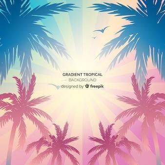 Fondo tropical con degradado