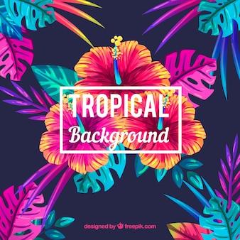 Fondo tropical de flores