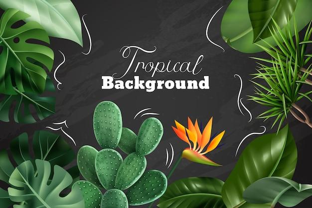 Fondo tropical con imágenes realistas de plantas de interior, flores y hojas en la pizarra