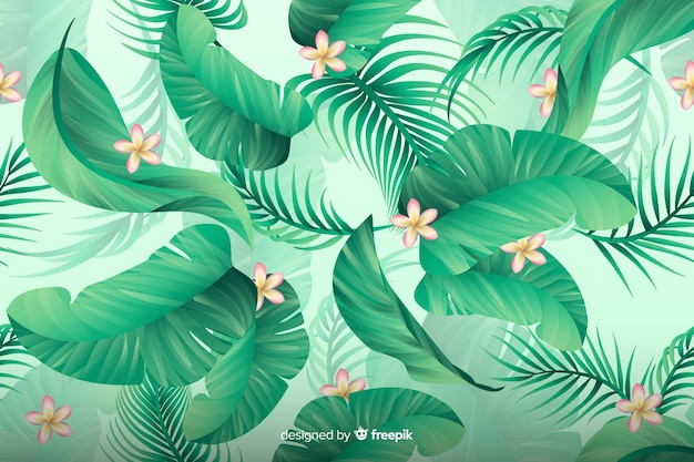 Fondo tropical natural con hojas