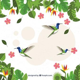 Fondo tropical con pájaros y plantas