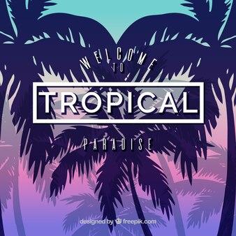Fondo tropical de palmeras