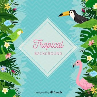 Fondo tropical con tucan y flamingo