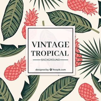 Fondo tropical de verano en estilo vintage