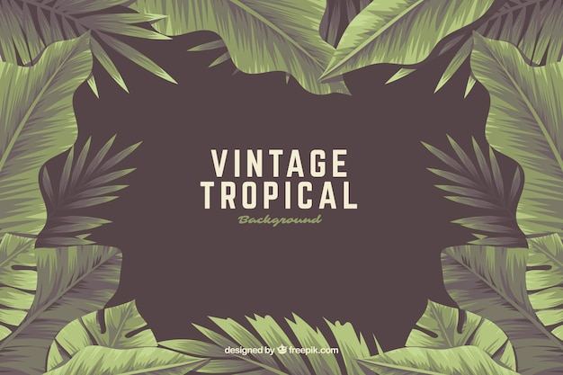 Fondo tropical vintage