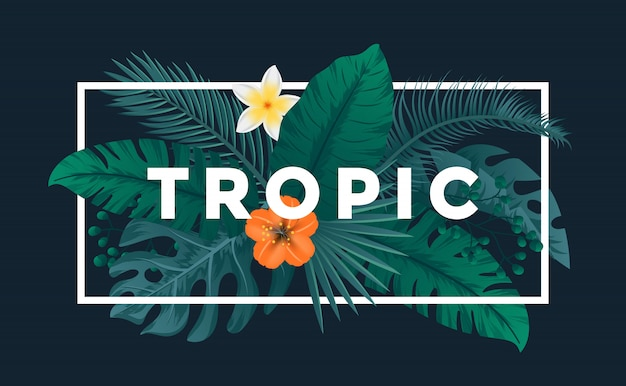 Fondo tropical