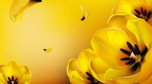 Fondo con tulipanes amarillos, pétalos voladores y espacio para copiar texto.