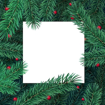 Fondo de vacaciones de invierno con tarjeta blanca en blanco y marco de borde de ramas de árboles de navidad y bayas.