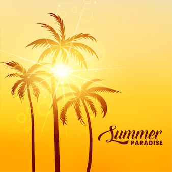 Fondo de vacaciones de paraíso de verano con sol