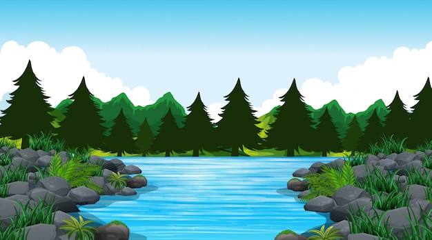 Fondo vacío escena de la naturaleza o fondo