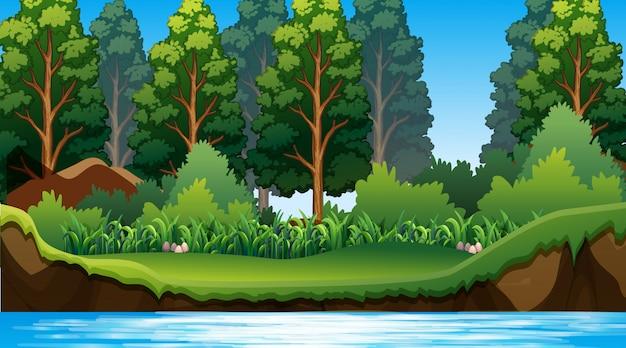 Fondo vacío naturaleza paisaje