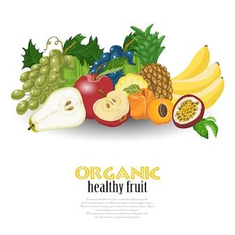 Fondo de vector con frutas exóticas