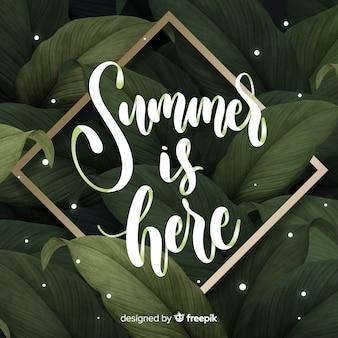 Fondo verano caligráfico