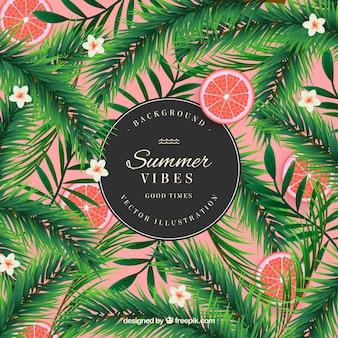 Fondo de verano con hojas de palmeras y naranjas