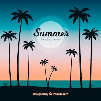 Fondo de verano con siluetas de palmeras
