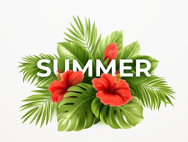 Fondo de verano tropical