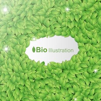 Fondo verde abstracto de naturaleza con marco de hojas