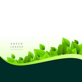 Fondo verde con estilo de hojas verdes