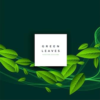 Fondo verde de hojas flotantes.