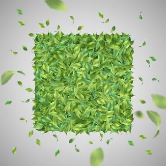 Fondo verde natural con hojas voladoras