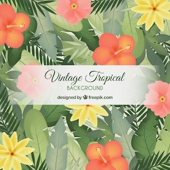 Fondo vintage de hojas tropicales