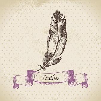 Fondo vintage con plumas. ilustración dibujada a mano