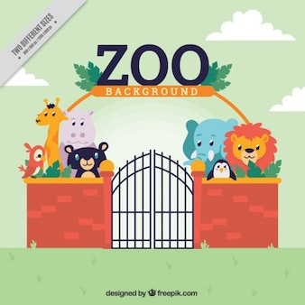 Fondo de zoo con animales salvajes