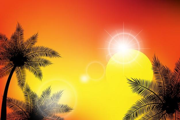 Fondos tropicales de verano con palmeras.