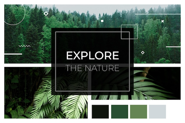 Foto collage naturaleza explorando concepto