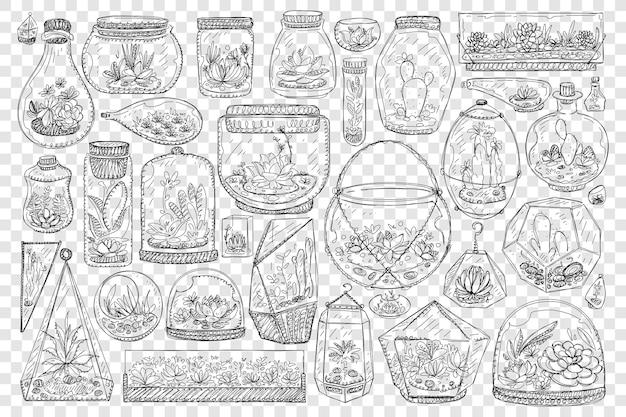 Frascos para cultivar cactus doodle conjunto ilustración