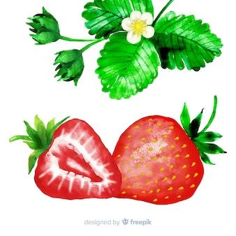 Fresas en acuarela