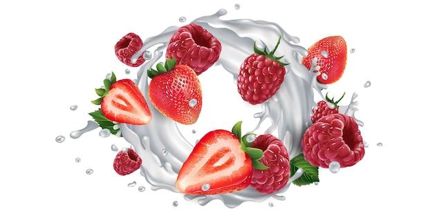 Fresas y frambuesas frescas y un yogur o salpicaduras de leche sobre un fondo blanco.