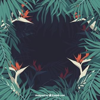 Fresco marco de la selva tropical