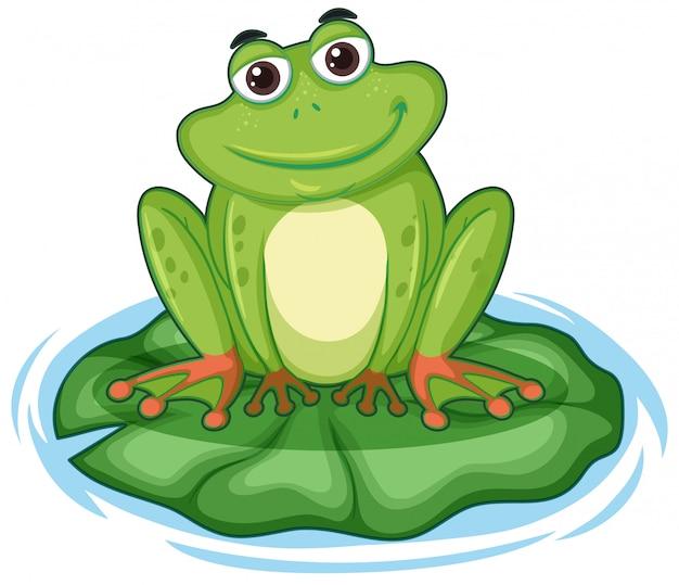 Frong feliz sentado en una hoja de loto