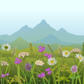 Frontera sin costuras con campo de hierba flores montañas papel tapiz de repetición natural para estampados textiles