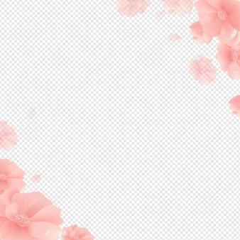 Frontera con flores y fondo transparente