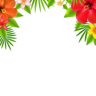 Frontera de flores tropicales, con malla de degradado,