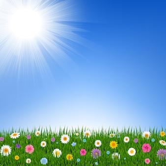 Frontera de hierba y flores y cielo